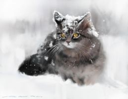 Kitty speed painting , one hour PS by nosoart