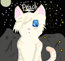 Peachpaw being adorable (Chibi attempt) by Wings-of-Cinder