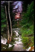 Streams of Spring I by Wodenswolf