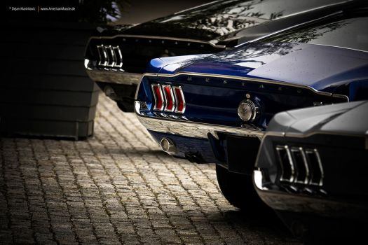 Three 68 Fastbacks by AmericanMuscle