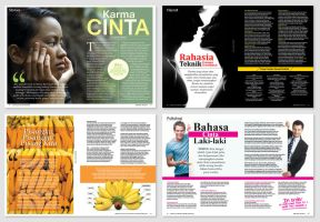 Magazine Layout by anomalisoul