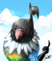 Content Chatot by super-tuler