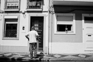 Friendly neighbour by NunoCanha
