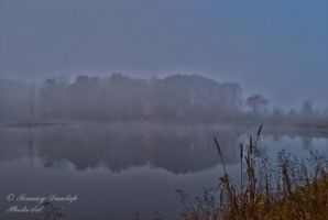 morning fog reflection by Tommy8250