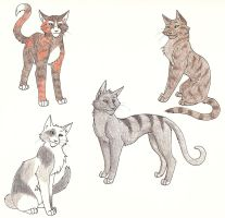 ThunderClan Apprentices Four by CaptainMorwen
