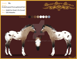 Foal for SoM--Stables by Opium5