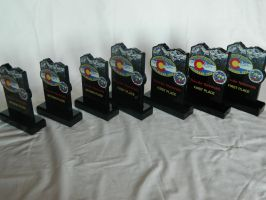 IPMS 2013 National Convention All Awards by Kingtiger2101