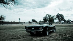 1966 Mustang GT Rear by aNdre-W