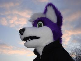 Grape wolf 2 by Nevask