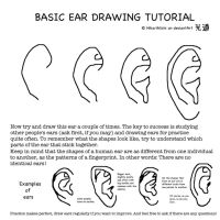 Ear drawing tutorial by HikariMichi