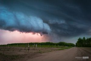 Beauty and the beast attacked supercell by NorbertKocsis