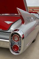 Tail Fin by ArtLoverPinUp
