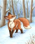 Fox in the Snow by SilentRavyn