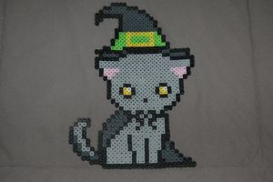 Witch Cat by evilpika