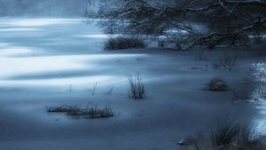 Depths Of Winter by Daisy919