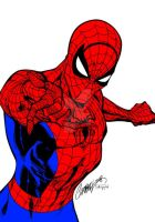 Spiderman Drawing by J. Scott Campbell (Colored) by TheComicBookMaster