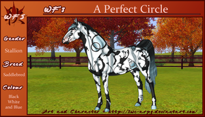 WF's A Perfect Circle by SWC-arpg