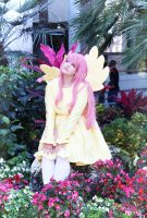 Fluttershy: My Secret Garden by II2DII
