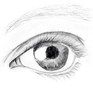 Photo-Realistic Eye (I tried XD) by TeamShikaIno