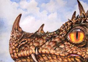 Dragon Close up by Kelii