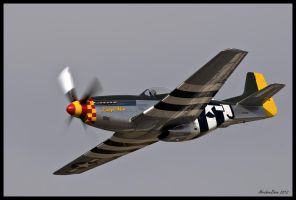 Lady Alice 2012 II by AirshowDave