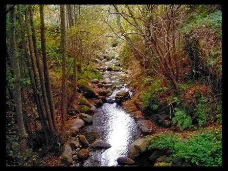 Mountain stream by Guilmour