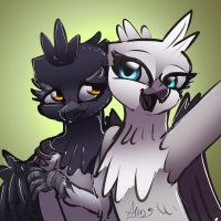 30 minute challenge - Griffon Sisters by Alumx