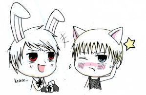 Bunny Prussia and Neko Germany by kakaleng1