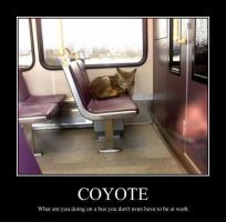Coyote by zombiexCocktail