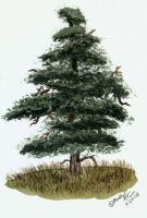 Watercolor Tree Test V by Eclipsis