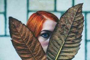 Autunno by MarinaCoric