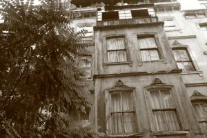 old houses2 by lydelodia