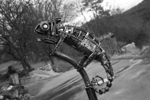 metal chameleon by frequenzlos