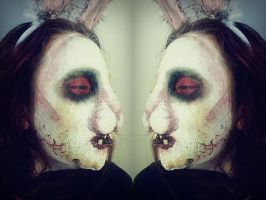 Follow the White Rabbit by YourDementedAlice
