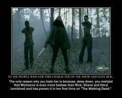 To the Viewers of the Show Who Hate Michonne by codebreaker2001