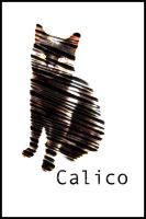 Calico Cover Art by Blue-Storm-Spirit