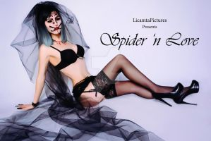 Spider 'n Love by LicamtaPictures
