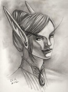 Portrait of Solarine Fairlight by teutelquessir