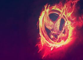 Hunger Games Wallpaper by AlicetheShort
