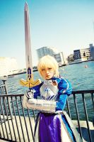 Saber - The Knights III by blue-ly