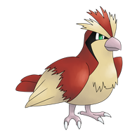 PKMNation Sparrow Ref Picture by Aetherium-Aeon