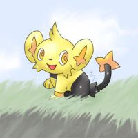 Shiny Shinx by moonwaveumbreon