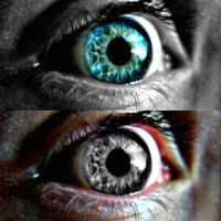 Epic eyes by Pammiesphotography
