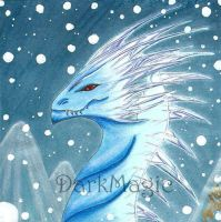 Lord of the Ice by MagicKimeraAngelus