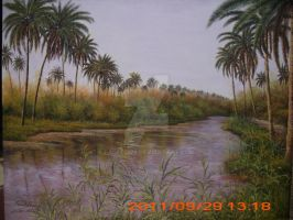 marshes in Iraq by fadel1979