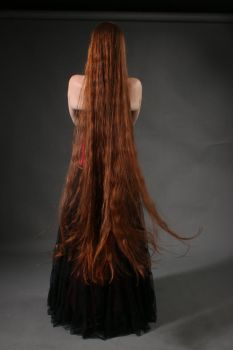 STOCK extremely long redhead hair II by MyladyTane