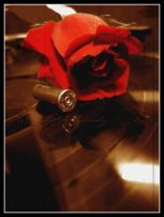 Bullet for my Valentine by BlackCarrionRose