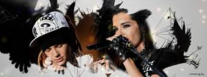 Kaulitz Twins Facebook Cover 2 by sanam5484