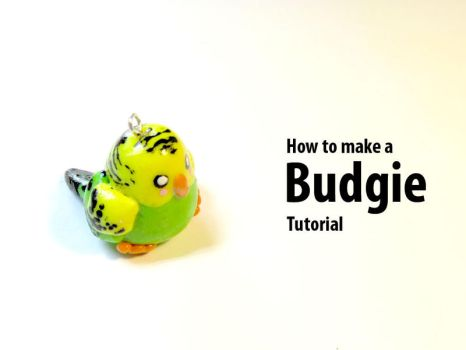 Budgie tutorial by pound-key