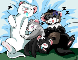 ferrets sleeping by WolffangComics